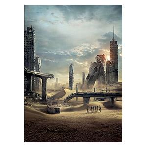 Панорамный постер Maze Runner